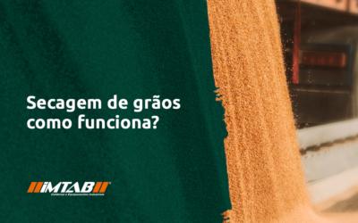 Secagem de grãos: Veja como funciona esse importante processo