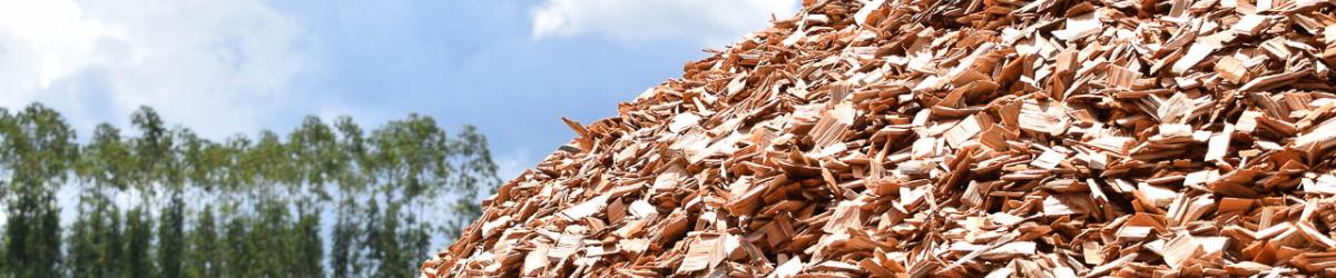Biomassa   Imtab